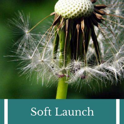 Soft Launch